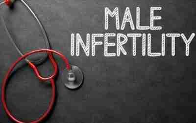 Il Narcisismo del maschio infertile