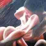 L'impotenza sessuale nella coppia